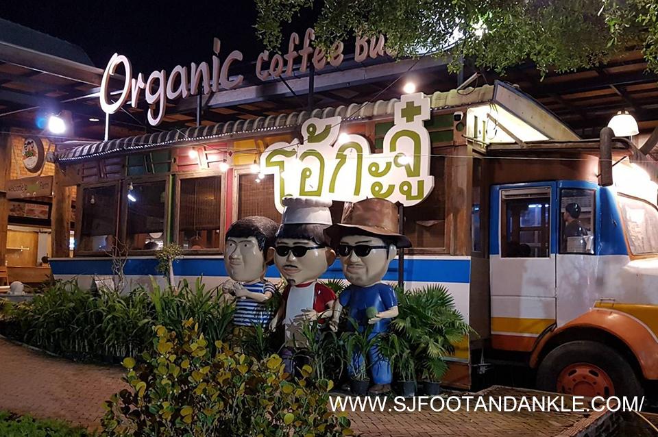2 1 - Ohkajhu vegetable garden shop